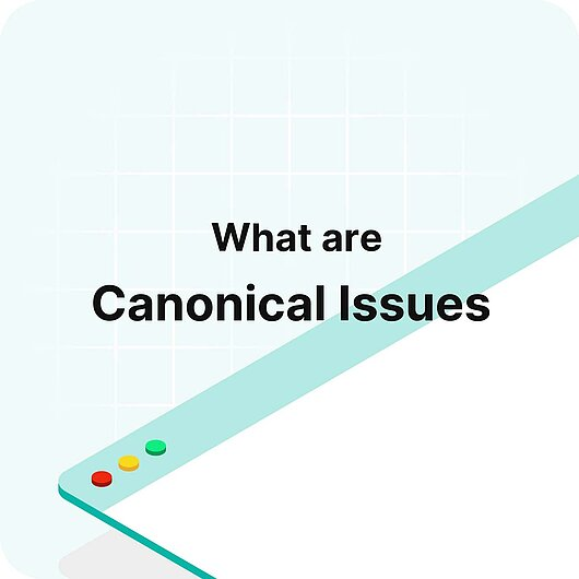 What are Canonical Issues? - Visitor Analytics Glossary