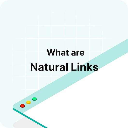 What are Natural Links? - Visitor Analytics Glossary