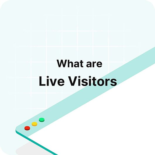What is Live Visitors? - Visitor Analytics Glossary