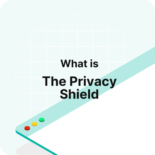 Visitor Analytics Glossary - What is the Privacy Shield?
