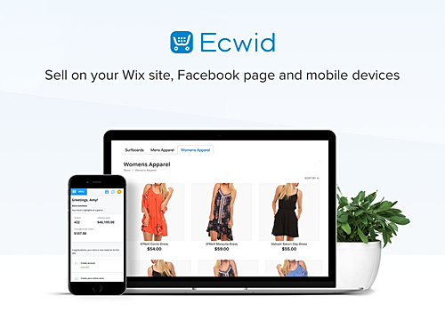 Online Store (by Ecwid) - Visitor Analytics-Blog