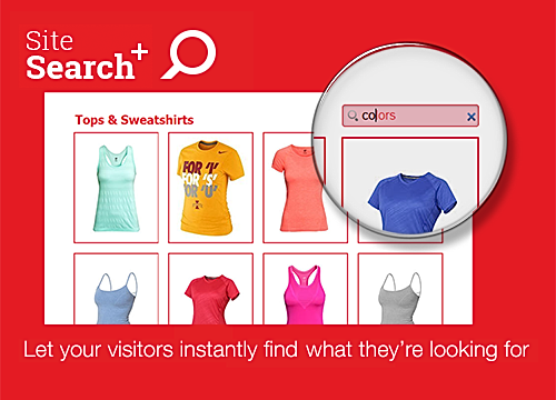 Site Search - Visitor Analytics-Blog