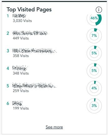List of top visited pages of your website in dashboard of Visitor Analytics