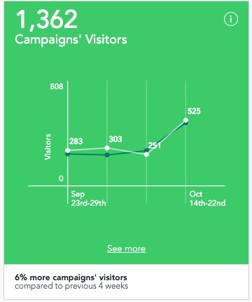 Overview of visitors of a URL campaign with UTM parameters within Visitor Analytics